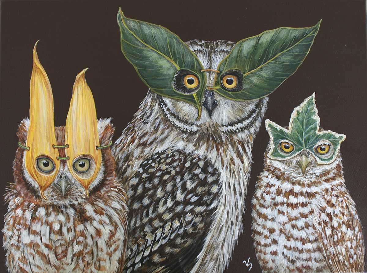 vicki sawyer owls 1200 893